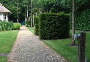 Aanleg tuinverlichting Brasschaat